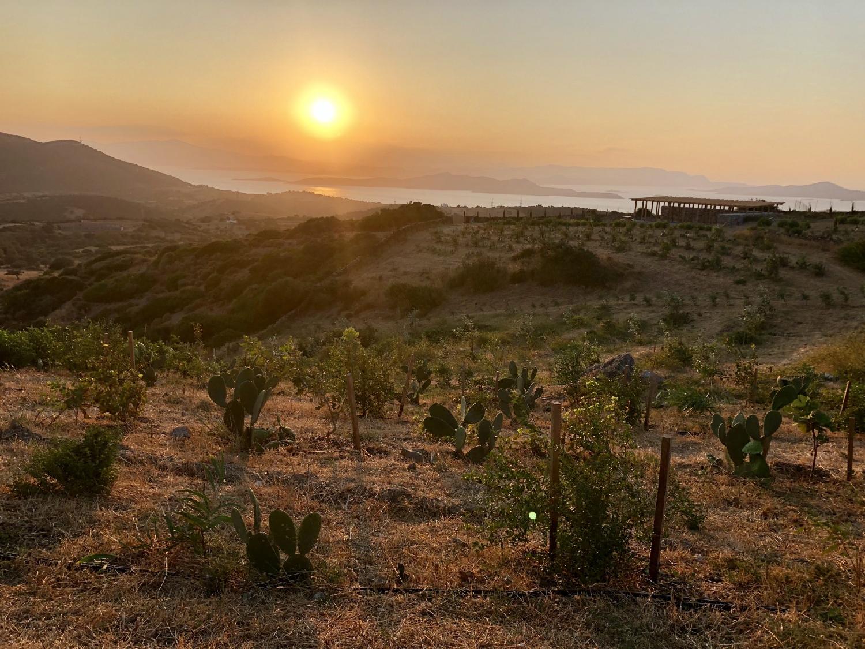 Stira, Greece, July 2020