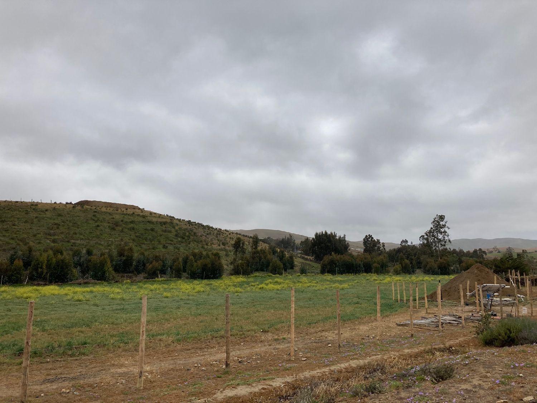 Peña Blanca, Chile, October 2020