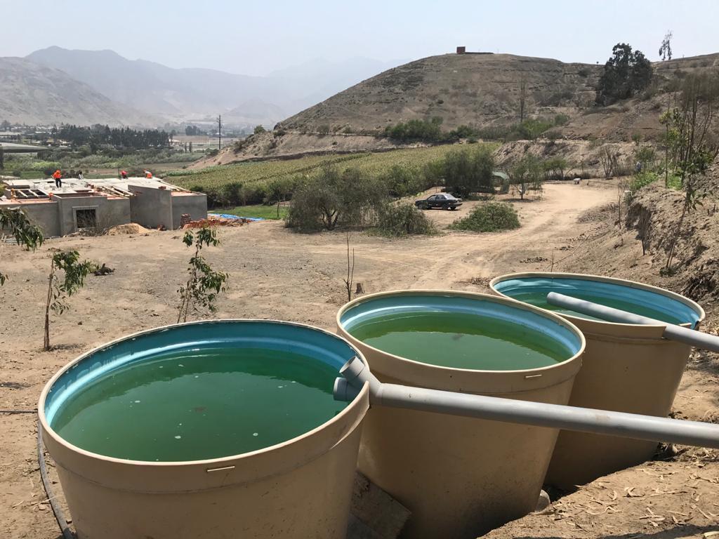 Pachacamac, Peru, October 2020