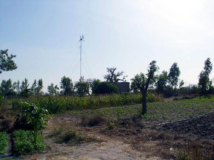 Niayes | Senegal<br/>