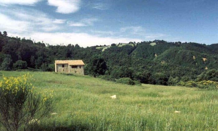 Tuscany | Italy<br/>