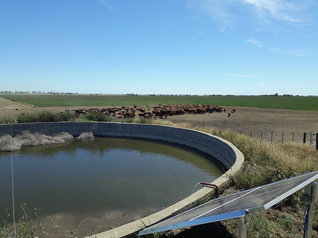 Cereales, Argentina, November 2020