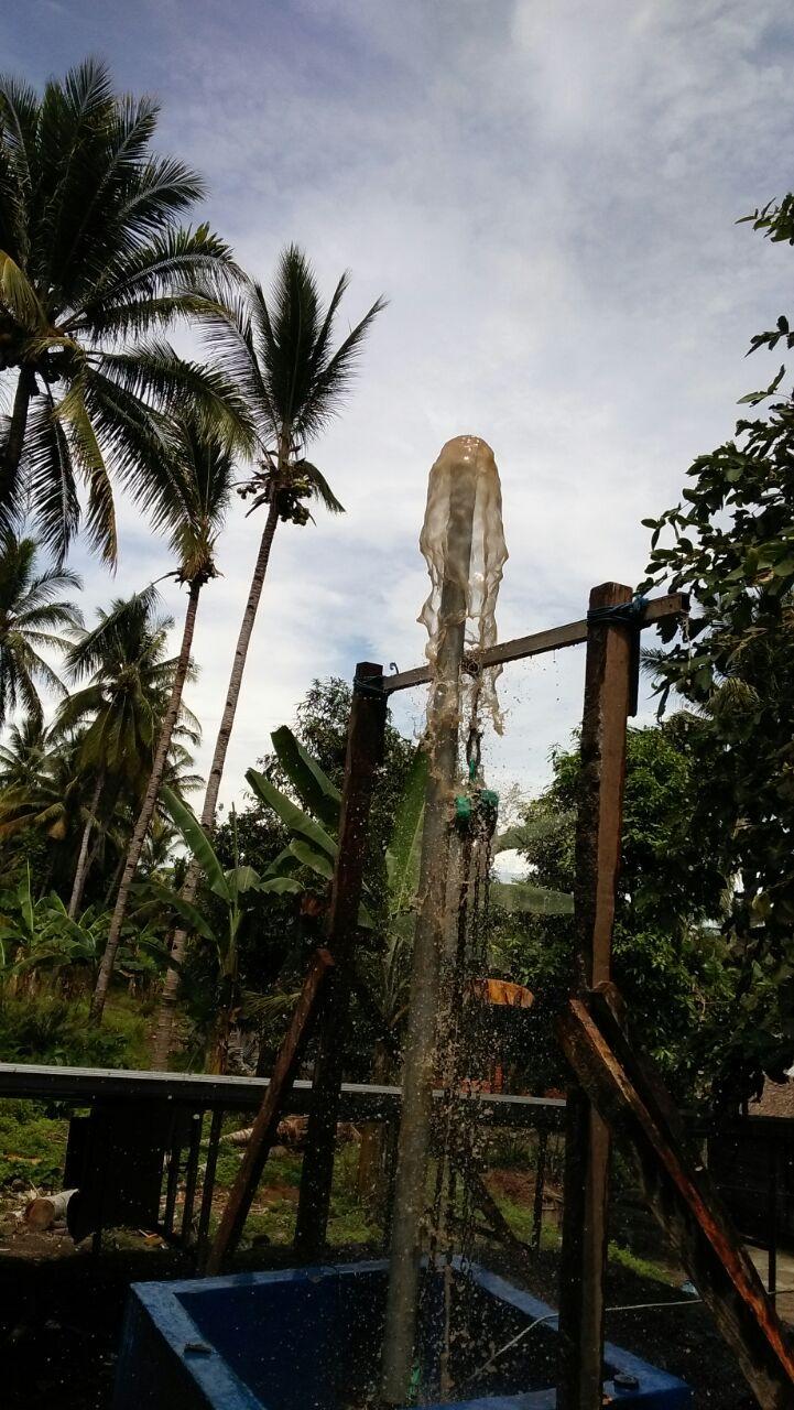 tagono | Indonesia<br/>