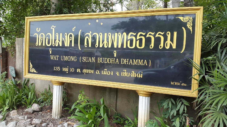 Chiangmai | Thailand<br/>