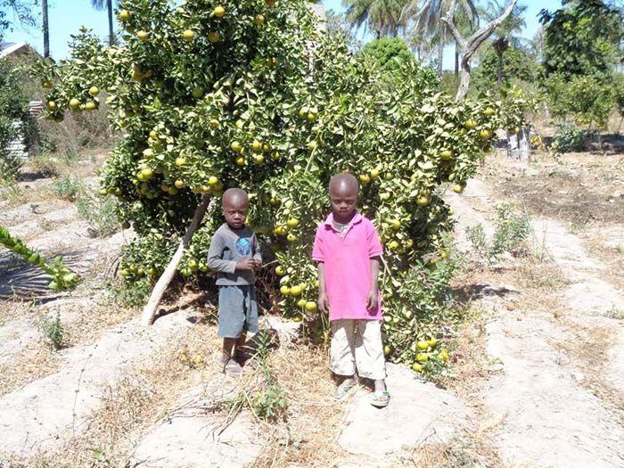 Kafountine | Senegal<br/>